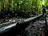 Grupo Perú COP20: Estrategia climática peruana está incompleta
