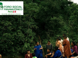 ¡RATIFICACIÓN DEL ACUERDO DE ESCAZÚ, EN EL CONGRESO DE LA REÚBLICA! RECHAZAMOS LAS MANIOBRAS DE DESINFORMACIÓN Y MANIPULACIÓN  (FOSPA Perú)