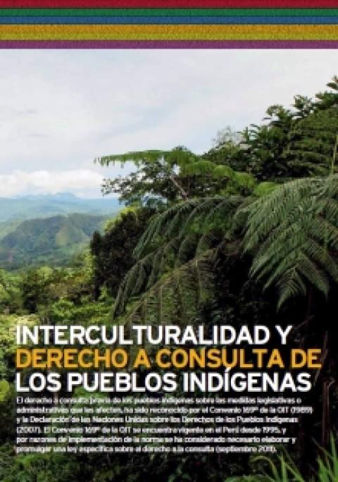 Boletín informativo: Interculturalidad y Derecho a Consulta de los Pueblos Indígenas