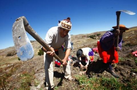 FSP y CONVEAGRO publican Balance de las herramientas para la incidencia en política públicas sobre agricultura familiar