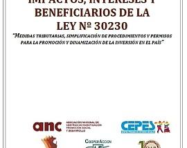 Impactos, intereses y beneficiarios de la Ley Nº 30230