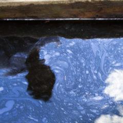 Organizaciones expresan preocupación por cancelación de visita de la CIDH a comunidades impactadas por derrames de petróleo