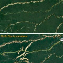 Promulgan ley que amenaza Amazonía y pueblos indígenas