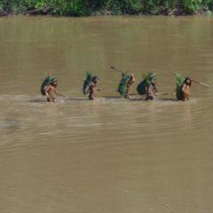 Exigimos protección de pueblos indígenas en aislamiento y áreas naturales protegidas del departamento de Ucayali