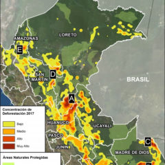 Estiman pérdida forestal de 200 mil campos de fútbol en el 2017
