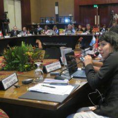 Acuerdo regional vinculante y sin reservas para proteger a los defensores ambientales, el acceso a la información y la participación ambiental