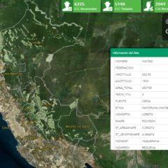 Minagri pone en riesgo territorios indígenas con catastro desactualizado