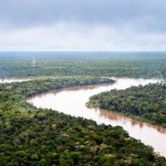 El Amazonas, en riesgo en un eventual gobierno de Bolsonaro en Brasil