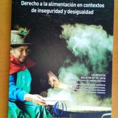 ¿Cómo garantizar el derecho a la alimentación en medio de la desigualdad e inseguridad? Texto reúne reflexiones de diversos especialistas