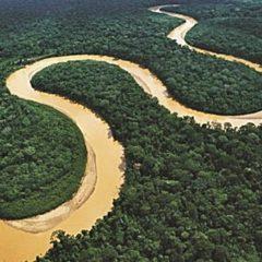 Río Amazonas recibirá la Jerarquía 4 como recurso turístico (Servindi)
