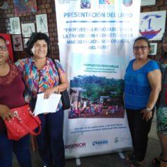 En Iquitos, dirigentes sociales y funcionarios públicos debaten alternativas energéticas con especialista