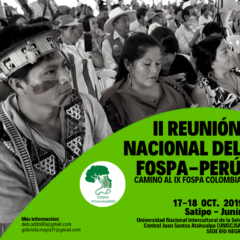 En Satipo, Foro Panamazónico realizará Segunda Reunión Nacional Perú, camino a IX Encuentro Internacional en Colombia