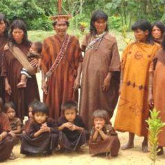 GTPPII de la CNDDHH exige medidas de protección a los pueblos indígenas u originarios ante la amenaza de propagación del Covid-19
