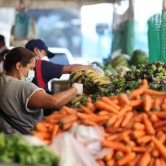 CONVEAGRO propone restablecer la economía de la Agricultura Familiar frente a la pandemia