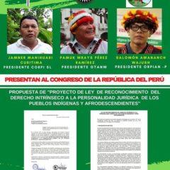 GTANW, CORPI y ORPIAN presentaron propuesta de ley para el reconocimiento jurídico de los pueblos