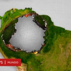 «5 de junio, medio ambiente, 34 fallecidos por defenderlo y Covid-19» por Paco Muguiro