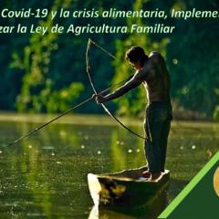 Frente al Covid-19 y la crisis alimentaria, Implementar y Amazonizar la Ley de Agricultura Familiar