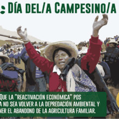 Día del/a Campesino/a: Que la «reactivación económica» no sea volver a la depredación ambiental y el abandono de la agricultura familiar