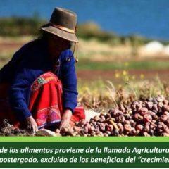 En Perú, el 70% de los alimentos proviene de la llamada Agricultura Familiar