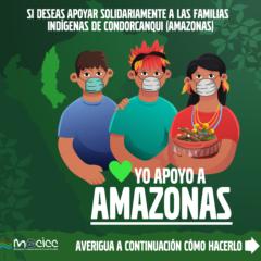 Súmate a la campaña «Yo apoyo a Amazonas»