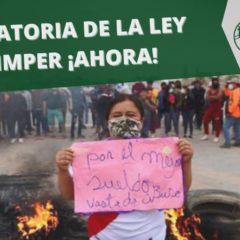 𝗗𝗘𝗥𝗢𝗚𝗔𝗧𝗢𝗥𝗜𝗔 𝗗𝗘 𝗟𝗔 𝗟𝗘𝗬 𝗖𝗛𝗟𝗜𝗠𝗣𝗘𝗥 ¡𝗔𝗛𝗢𝗥𝗔! ( Forum Solidaridad Perú)