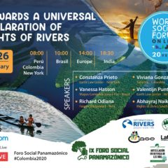 The world needs a Universal Declaration of River Rights: Join this January 26 (8 am. N.Y. / 2 pm. Europe) at the World Social Forum
